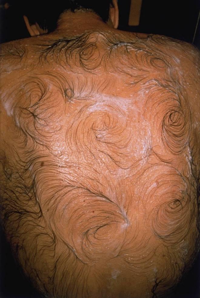 Mona Hatoum, 'Van Gogh's Back',