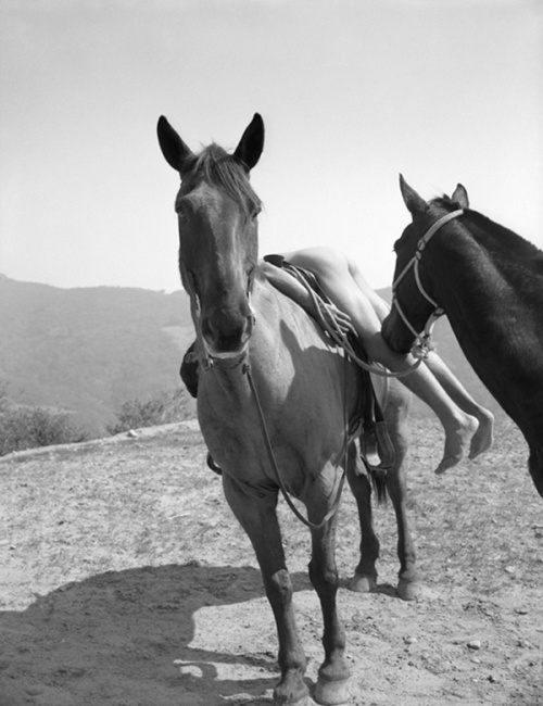 Bob Mizer, 'Everett Lee Jackson with Two Horses, Los Angeles', c. 1959