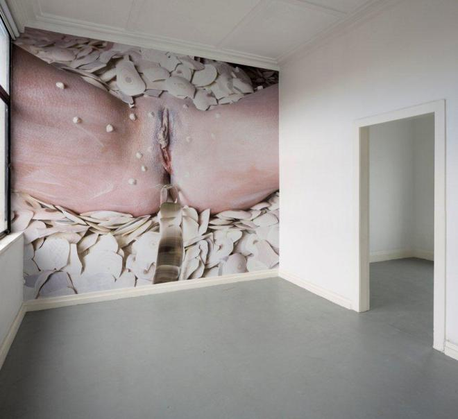 Spider Woman and the Kang Diamond, installation view, Ivan Anthony Gallery, Auckland, 2014